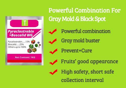 Pyraclostrobin 13%+Boscalid 25% WG