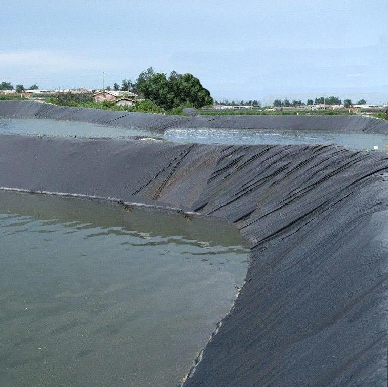 hdpe geomembrane for fish shrimp pond liner sheet