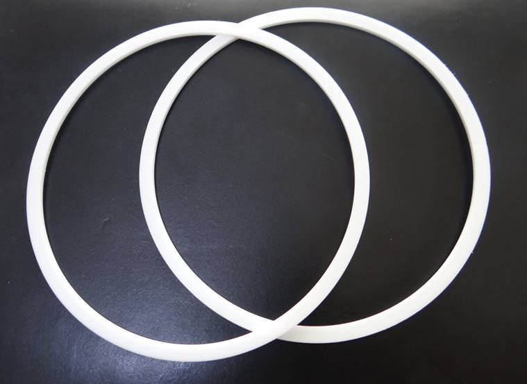 ptfe washer and gasket