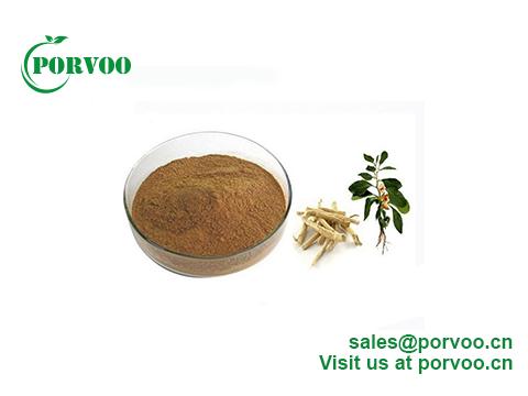Natural Ashwagandha Extract 5% Withanolide