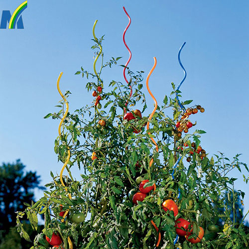 Durable and Robust Tomato Growing Spiral Stake Plant Growing Support Wire
