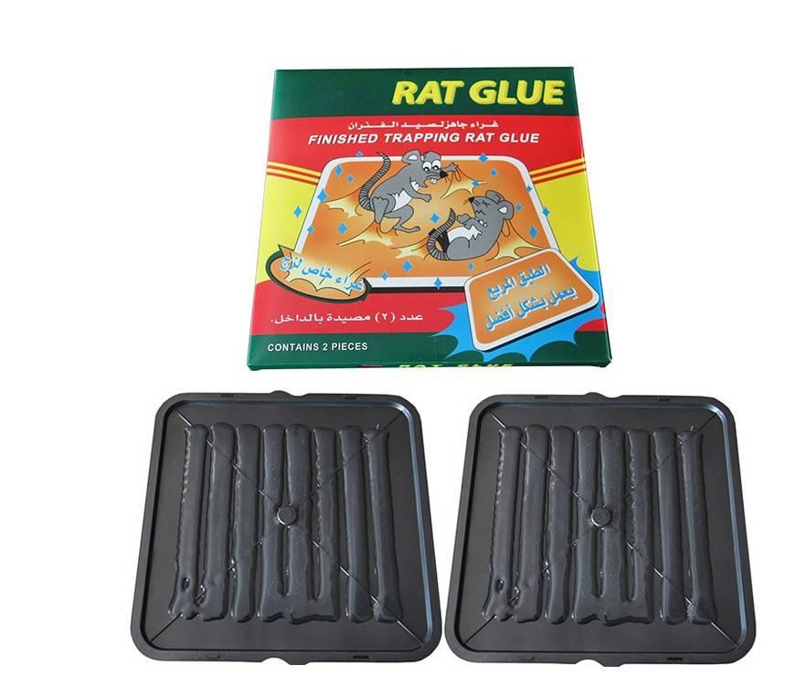 Mouse glue
