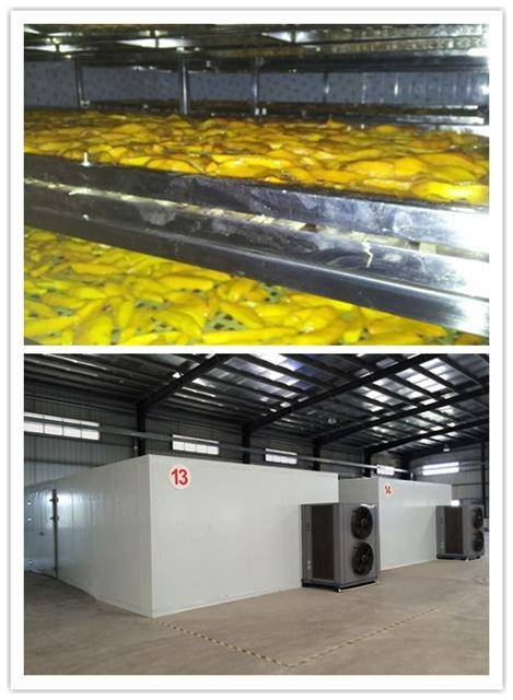 fruit dryer, air source heat pump energy, no Polution, clean drying, factory price.