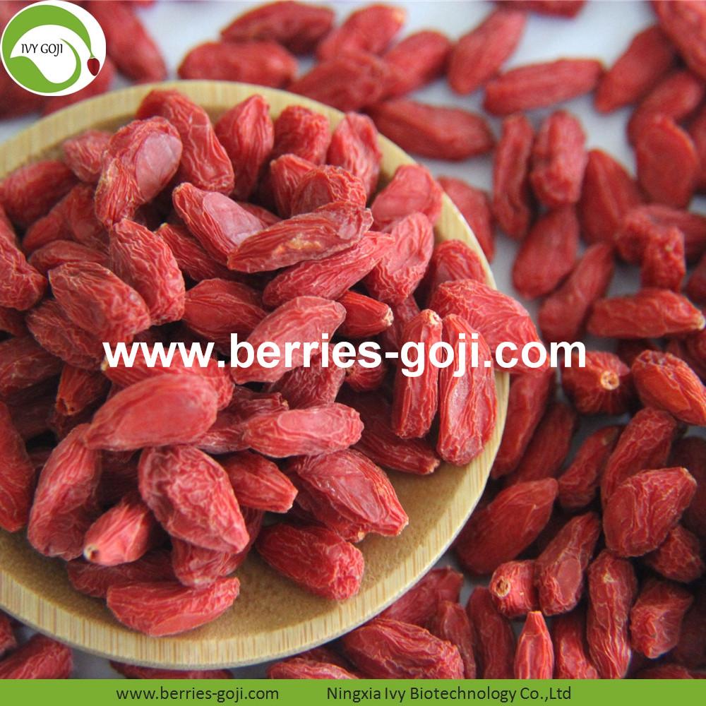 Hot Sale Factory Supply Dried Zhongning Goji Berry