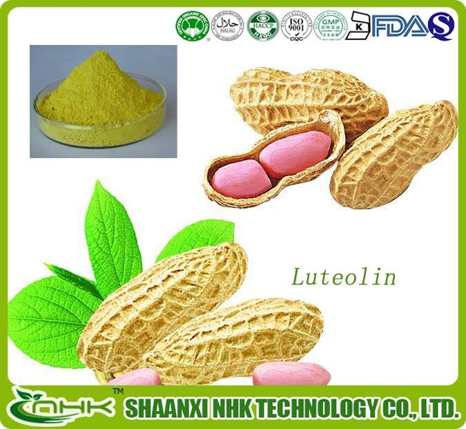 High quality natural and pure Peanut hull extract/ Luteolin Powder/ Luteolin