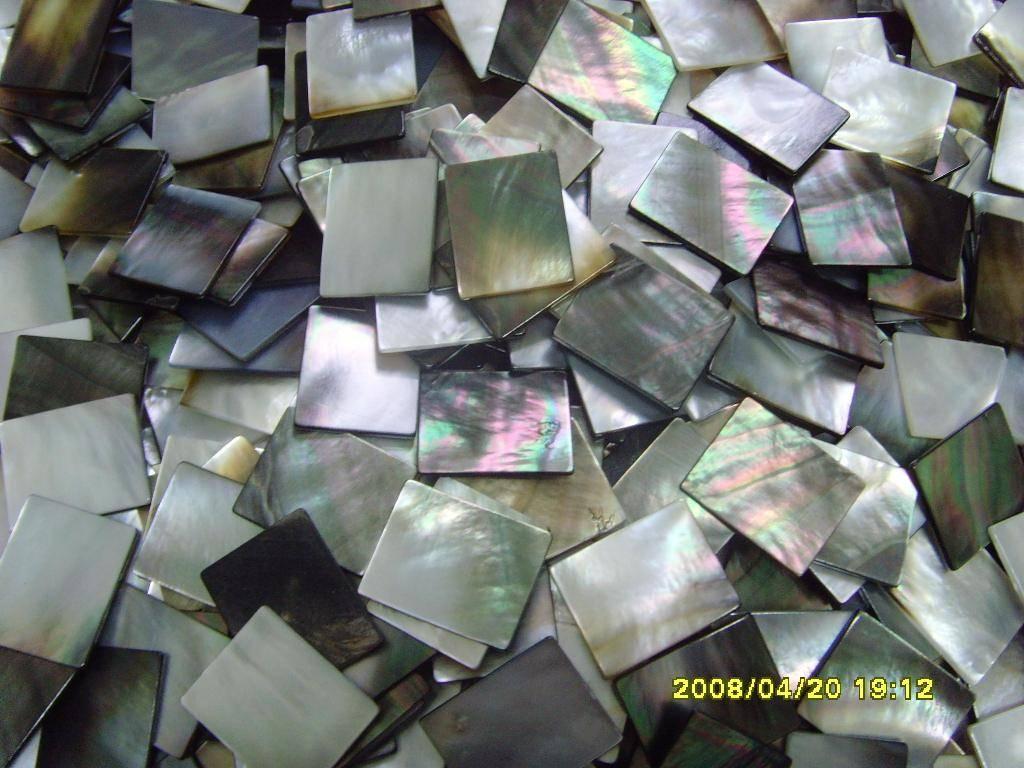 shell blanks/shell plates