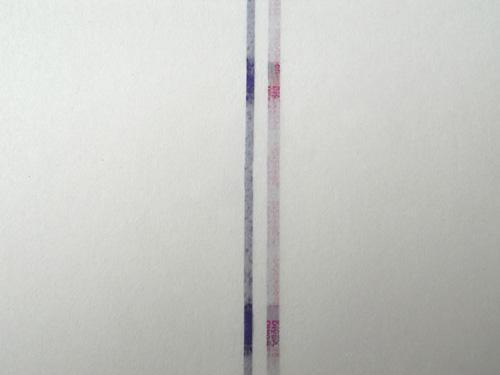 Security windowed hologram thread watermark paper