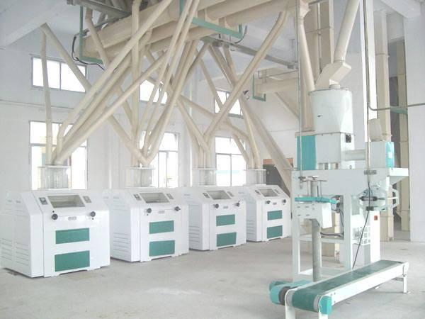 100mt per day maize production plant