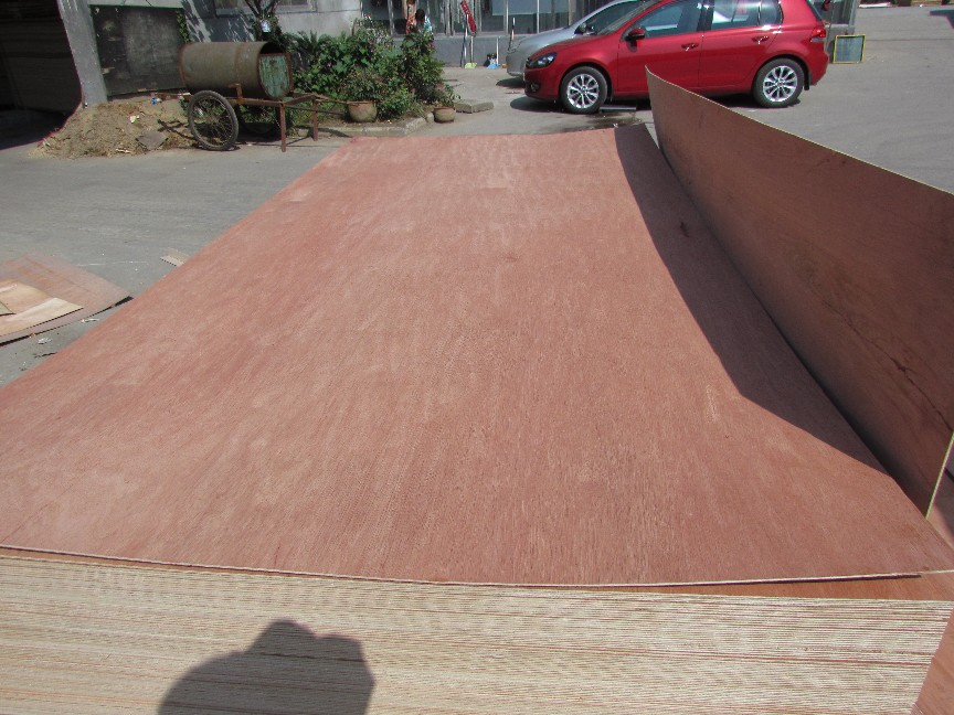 PACKING PLYWOOD & Commercial Plywood Lowest Price