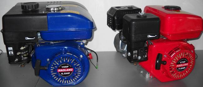 6.5HP Gasoline Engine with super quality and competitive price in nice apparenece