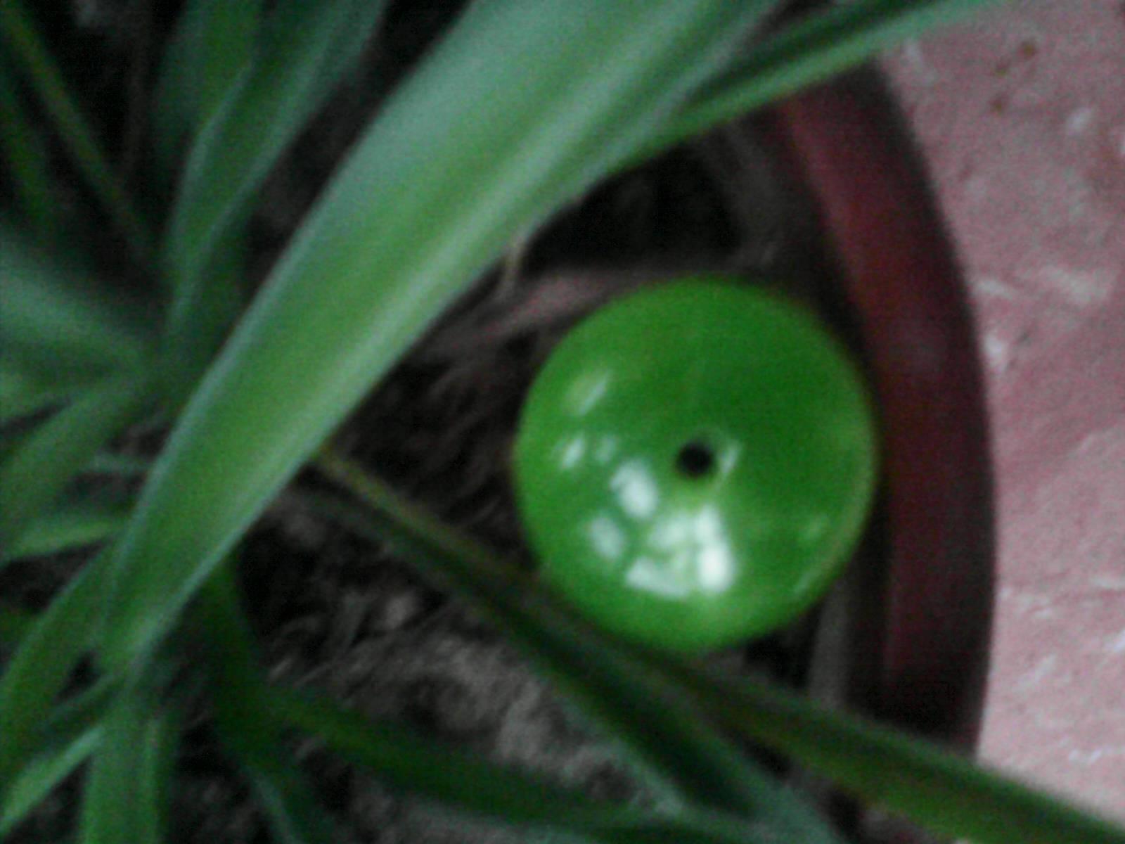 Flavour green round jade