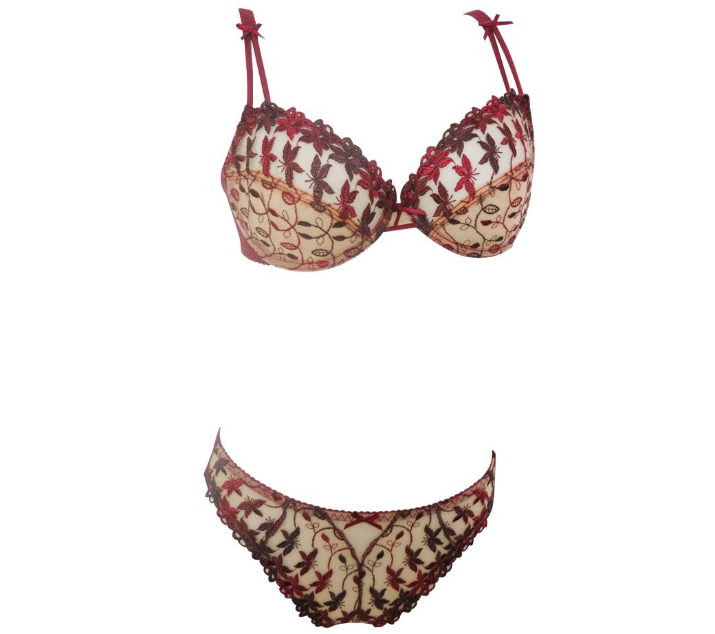Sexy Embroidery Transparent Lingerie Bra and Panty Set (FPY325)
