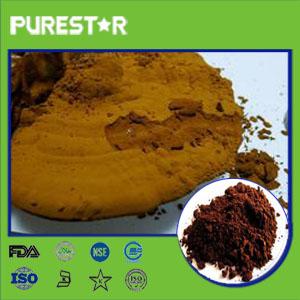 Ganoderma lucidum spore powder