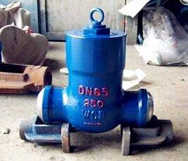 The power plant check valve