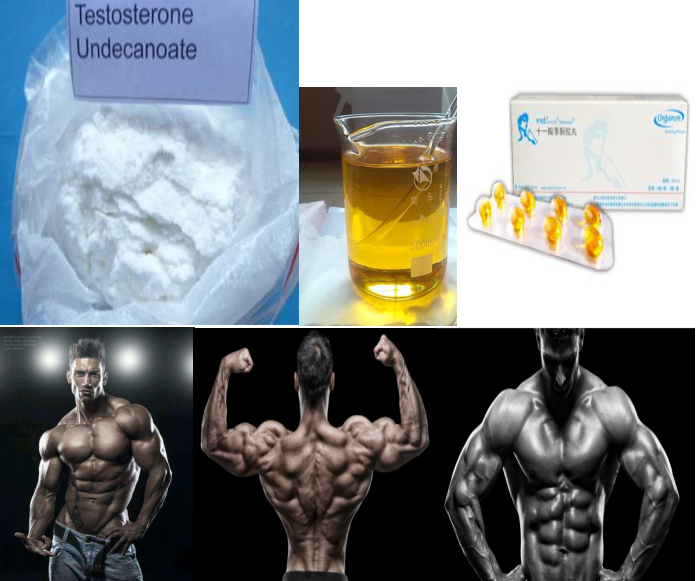 99.0% High Purity Testosterone Undecanoate powder Andriol raw powder for sex enhancement