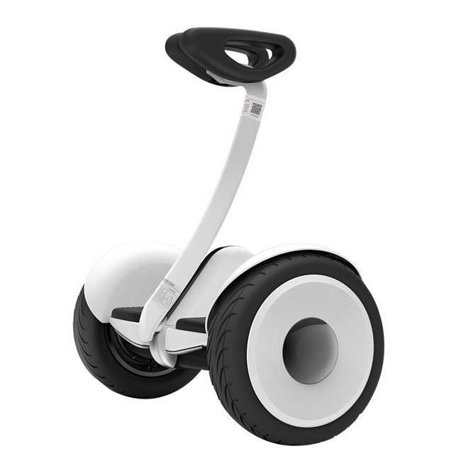 10inch Two Wheels Scooter Hoverboard ninebot scooter