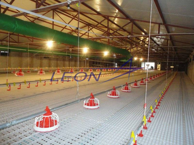 Leon Series Complete Poultry Farming Equipment