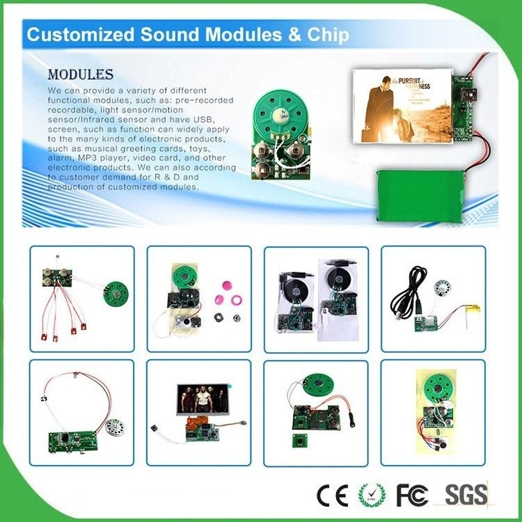 sound module for educational toy