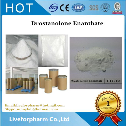 Bodybuilding White Steroid Powders Drostanolone Enanthate CAS 472-61-145