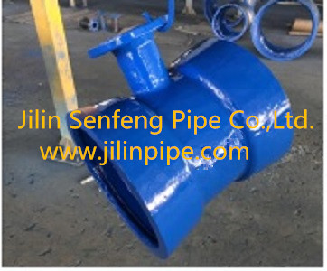 Double Socket Tee with Flange Branch