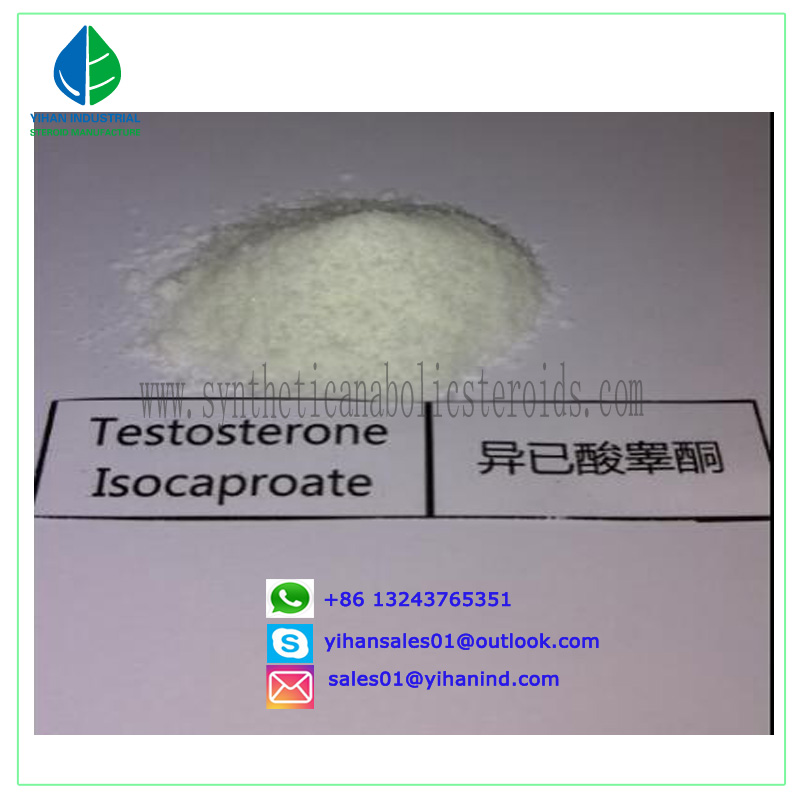 99% purity Testosterone Isocaproate Steroid Powder Raw Testosterone Isocaproate for Bodybuilding Jud