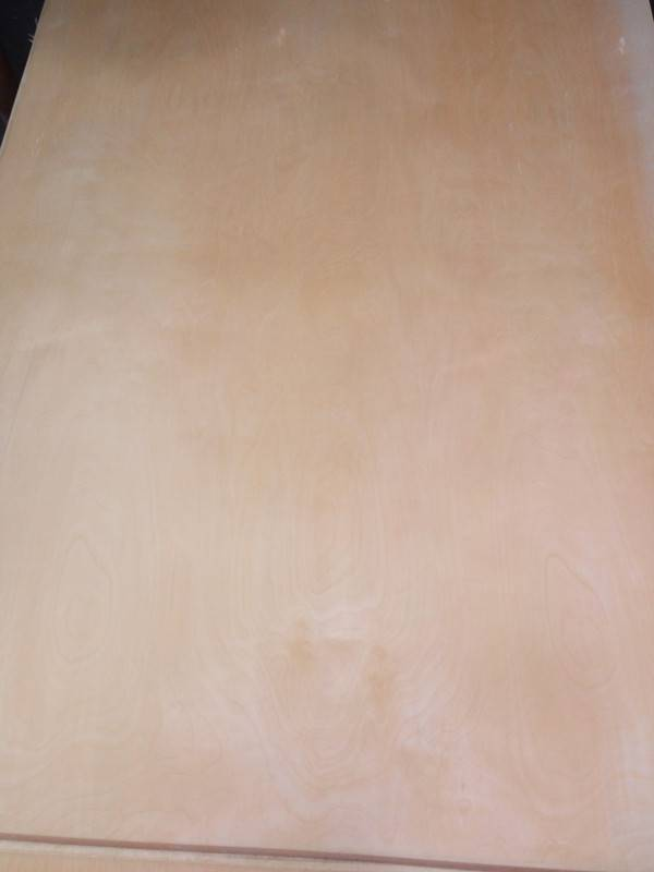 White Birch Veneered Plywood