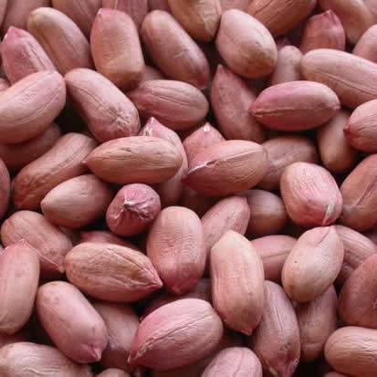 Peanuts shellers