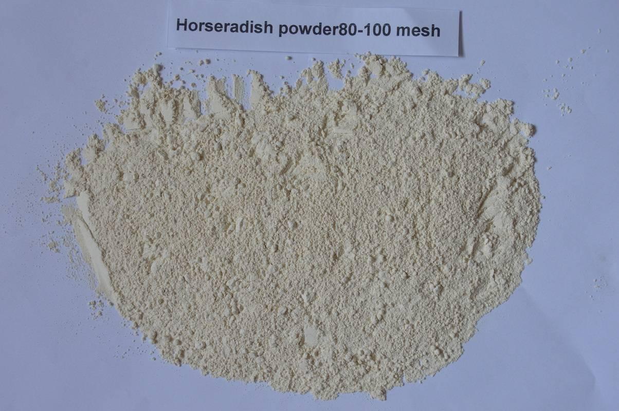 Dried Horseradish/dehydrated Horseradish powder