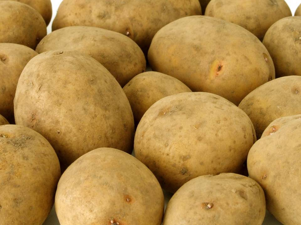 Fresh Farm Potatos