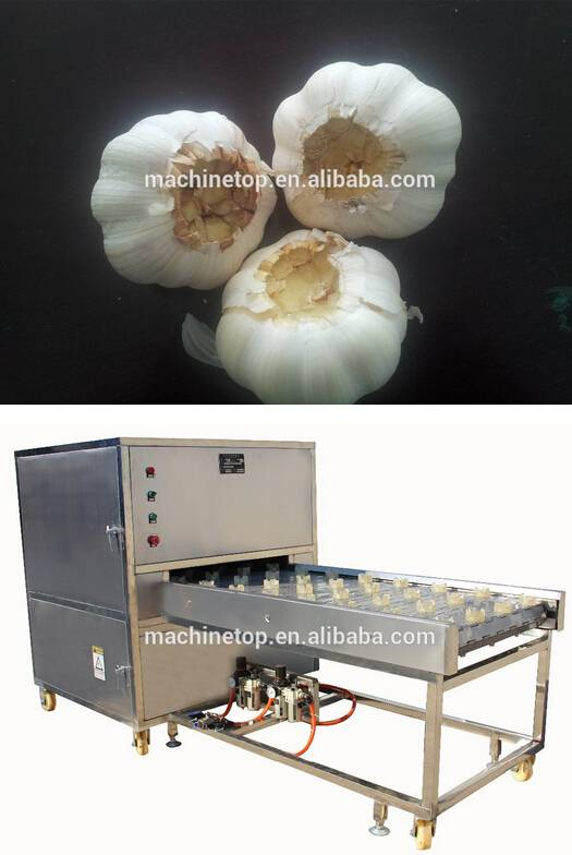 garlic cutting machine/garlic root cutting/garlic end cutter
