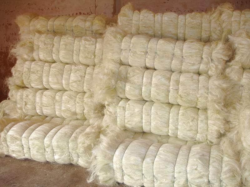 Natural Raw Sisal Fiber From Kenya