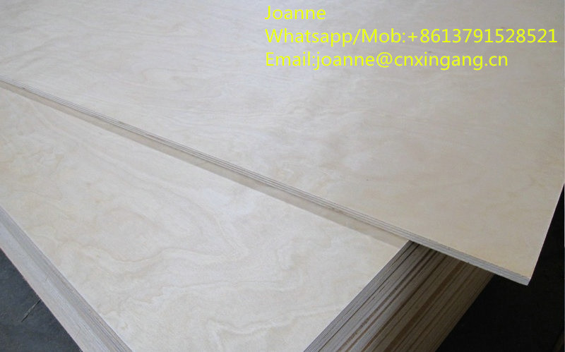 commercial plywood at wholesale price from shandong manufacturer SHANDONG GROUP