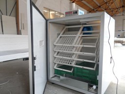 egg incubator ELYE-12