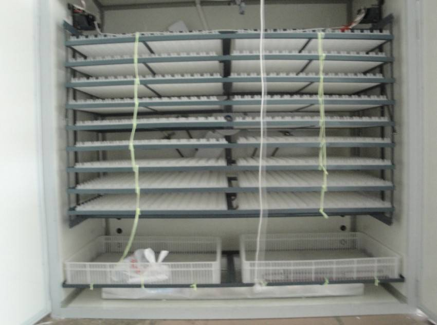Best Selling Chicken Hatchery Machine