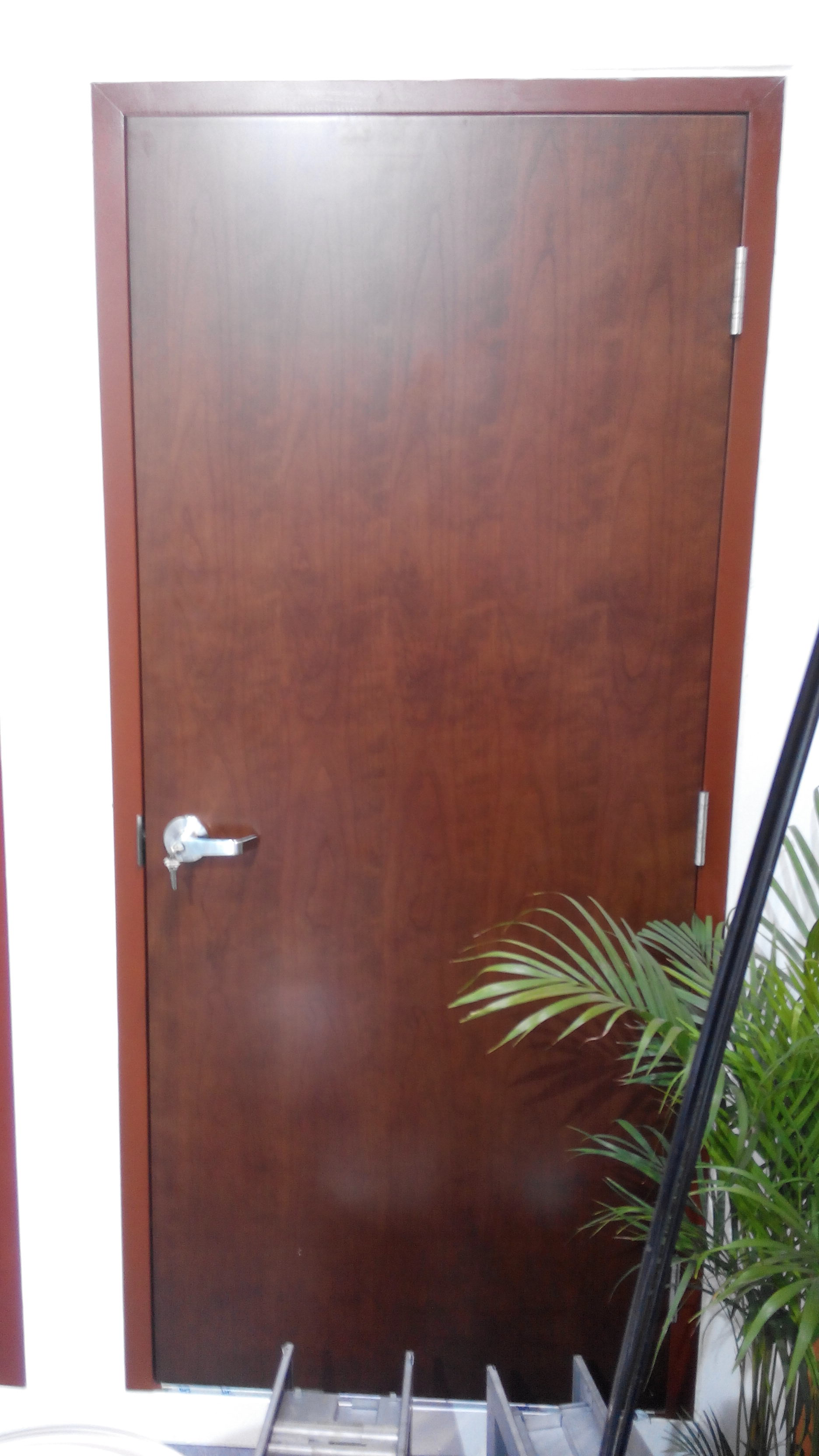 UL WH 20 30 45 90mins wood fire door MDF mineral fireboard oak birch walnut sapele veneer HPL