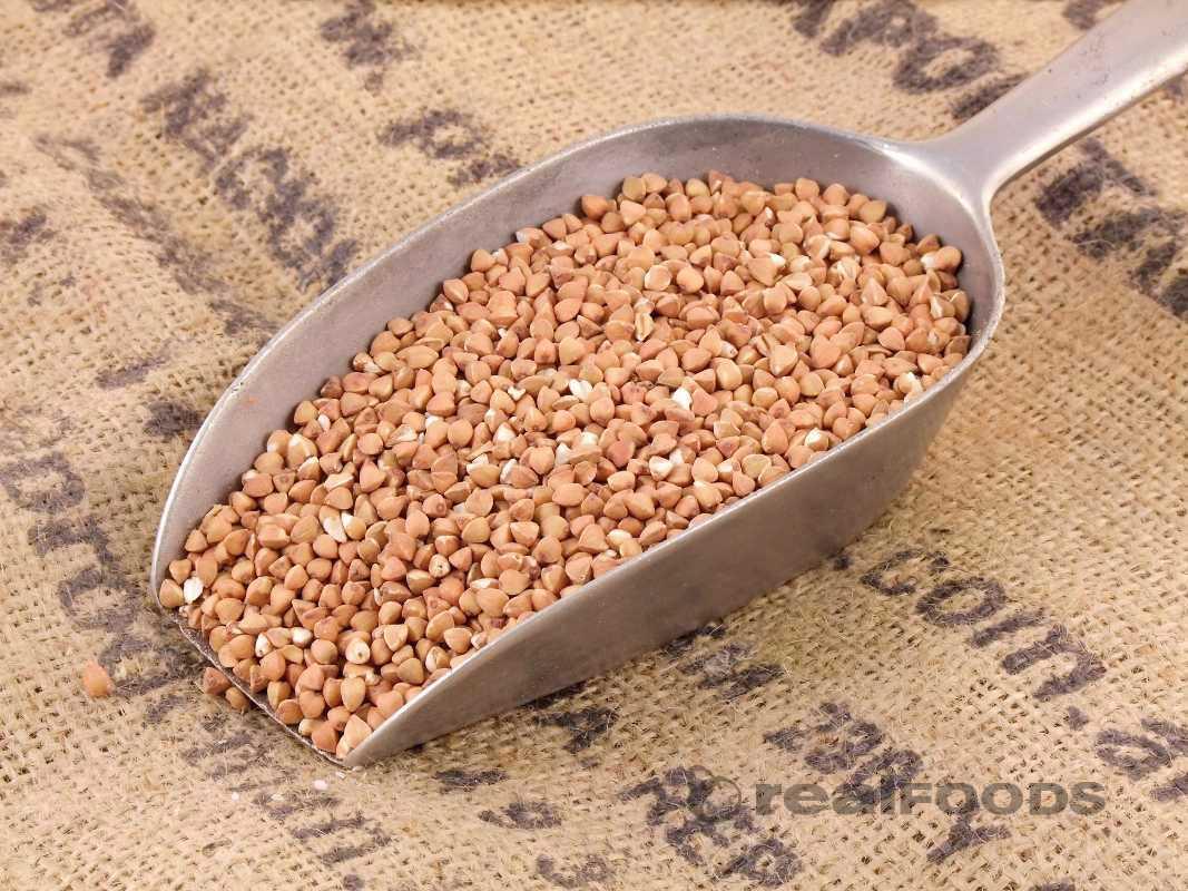 Barley,Buckwheat,buckwheat groats, Corn Or Maize,Gram,Nuts,Oat,Rice,Rye,Soy,Wheat Made From and Ba P