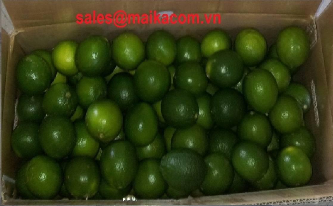 fresh limes fruit