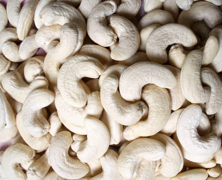 W240 Grade A Raw Cashew Nuts Cheap Price