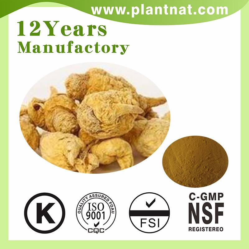 Maca Extract Anti-Fatigue Maca Root Extract herbal extract