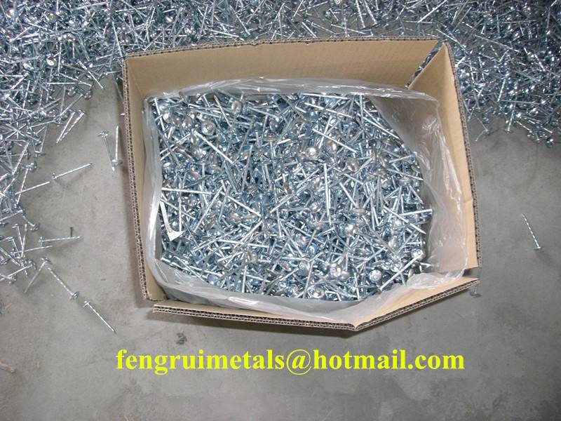Twisted shank galvanized umbrella roofing nails