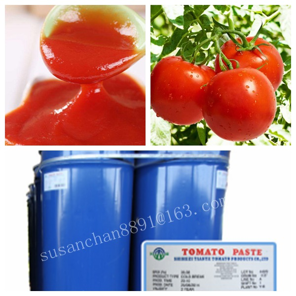 factory supply tomato paste from Xinjiang China