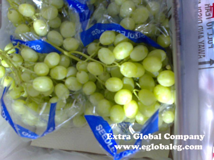 Sugraone Seedless Grapes