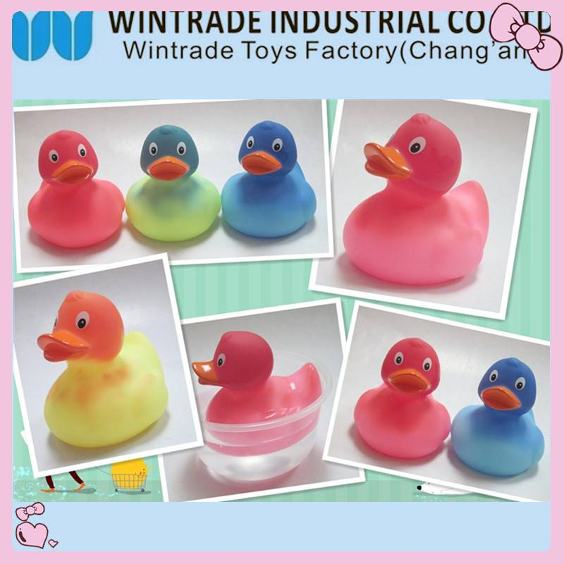 color changed rubber bath duck in hot water