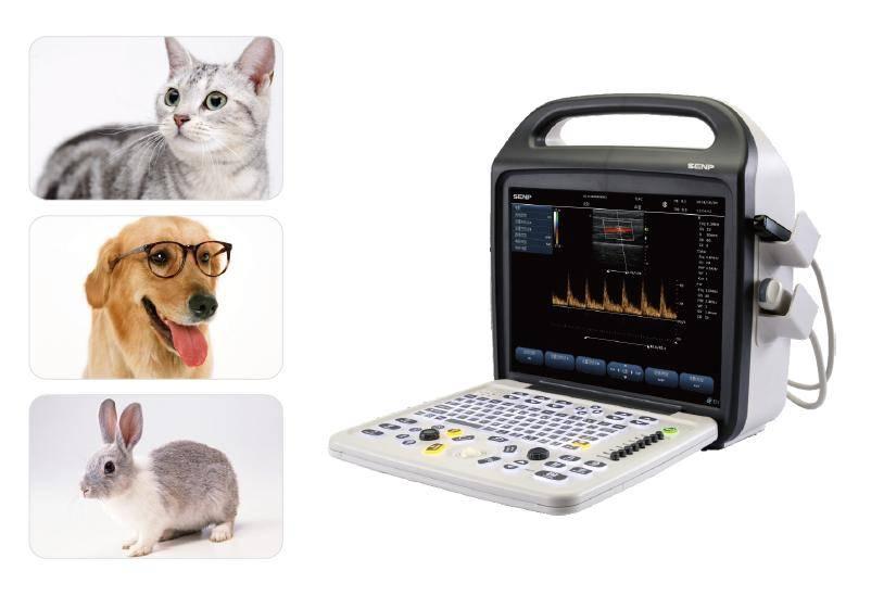 C5 Vet Portable Color Doppler Ultrasound System