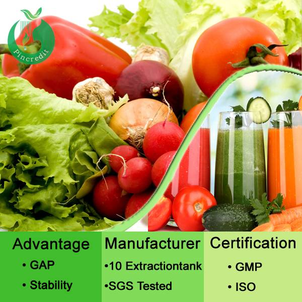 Organic Vegetable Powder Natural Tomato Powder