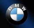 B.M.W. Engine Valve, Automobile Engine Valves
