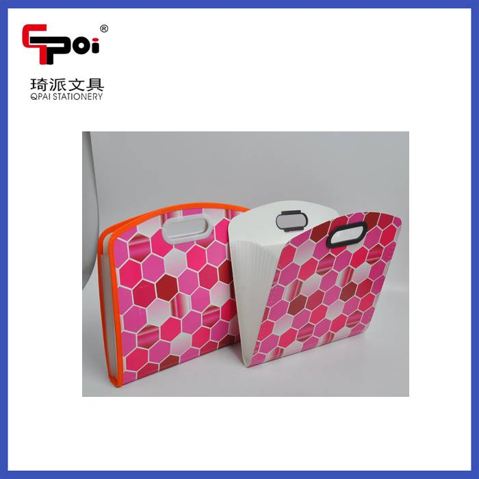 Stationery Supplier For Office Expanding File Folder With Hand