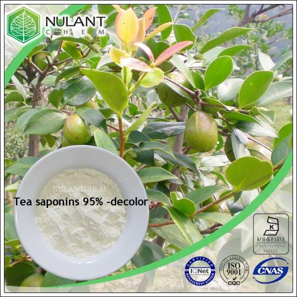 Tea saponin 95% 8047-15-2