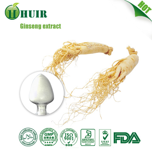 Low pesticides 80% Korean red ginseng extract panax ginseng powder