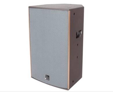 Professional Plywood Active Accuracy Pro Audio Speaker